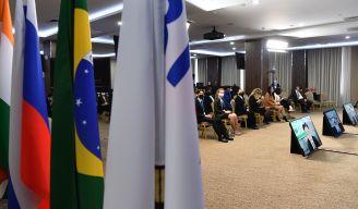 Главы ведомств по делам молодежи стран БРИКС  обсудили развитие профильного взаимодействия